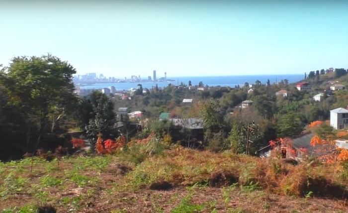 Земельный участок в зеленой зоне недалеко от Батуми
